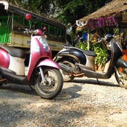 Scooter à Sukhothai