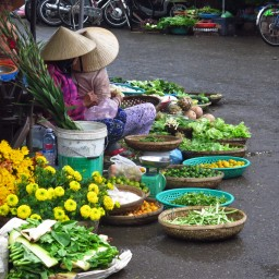 Retour à Saigon