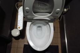 Monologue sur la toilette japonaise